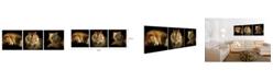 "Chic Home Decor Wild Safari 3 Piece Wrapped Canvas Wall Art Felines -27"" x 82"""