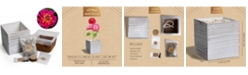 Studio Mercantile Plant Grow Self Watering Kit with Wooden Box