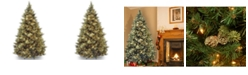 National Tree Company National Tree 7 .5' Carolina Pine Hinged Tree with Flocked Cones and 1000 Clear Lights