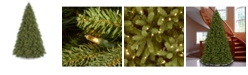 National Tree Company National Tree 12' Feel Real Jersey Fraser Fir Tree with 2000 Clear Lights
