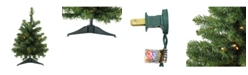 """Northlight 18"""" Pre-Lit LED Canadian Pine Artificial Christmas Tree - Clear Lights"""