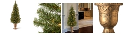 """National Tree Company 4' Montclair Spruce Entrance Tree in 10"""" Black/Gold Plastic Pot with 50 Clear Lights"""