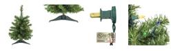 "Northlight 18"" Pre-Lit Canadian Pine Artificial Christmas Tree - Multi Lights"