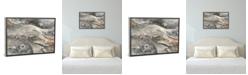 "iCanvas Minerals Iii by Albena Hristova Gallery-Wrapped Canvas Print - 26"" x 40"" x 0.75"""
