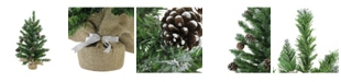 """Northlight 24"""" Frosted Norway Pine with Pine Cones Artificial Christmas Tree in Burlap Base - Unlit"""