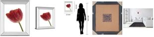 "Classy Art Red Tulip by Art Photo Pro Mirror Framed Print Wall Art, 22"" x 26"""