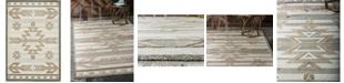 Bridgeport Home Pashio Pas2 Light Brown 6' x 9' Area Rug