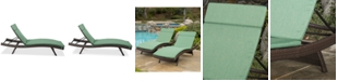 Noble House Hawkins Outdoor Chaise Lounge (Set Of 2)