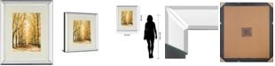 "Classy Art Falls Cathedral by Bruce Nawrocke Mirror Framed Print Wall Art, 34"" x 40"""