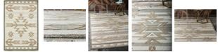 Bridgeport Home Pashio Pas2 Light Brown 4' x 6' Area Rug