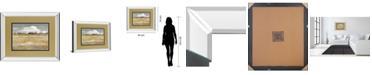 """Classy Art Meadow Shimmer II by Nan Mirror Framed Print Wall Art, 34"""" x 40"""""""