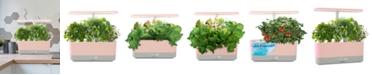 AeroGarden Harvest Slim with Gourmet Herbs Seed Pod Kit