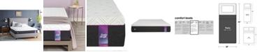 "Baxton Studio Sealy to Go 12"" Cushion Firm Hybrid Mattress- Twin, Mattress in a Box"