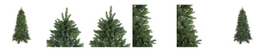 Northlight 6.5' Pre-Lit LED Instant Connect Neola Fraser Fir Artificial Christmas Tree - Dual Lights