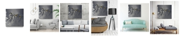 """Giant Art 20"""" x 20"""" Canary Islands Museum Mounted Canvas Print"""