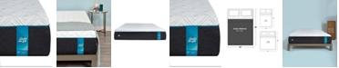 "Sealy to Go 12"" Plush Memory Foam Mattress- Queen, Mattress in a Box"