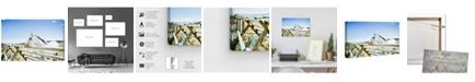 "Oliver Gal Cassandra Eldridge - Gracie The Horse Canvas Art, 15"" x 10"""