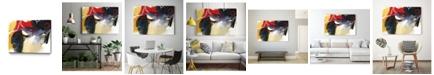 "Giant Art 40"" x 30"" Drama I Museum Mounted Canvas Print"