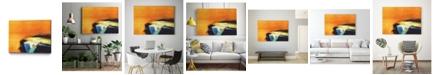 "Giant Art 20"" x 16"" Light Intensity Museum Mounted Canvas Print"