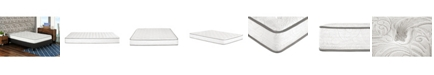 """Primo International Primo Berri 8"""" Pocket Coil with Lumber Gel Firm Mattress - Twin"""