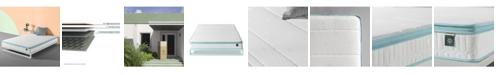 Zinus Hybrid Spring Mattress/ Firm Support, Queen