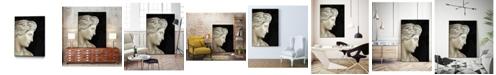 "Giant Art 20"" x 16"" Aphrodite Art Block Framed Canvas"