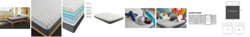"Corsicana Early Bird 10"" Hybrid Memory Foam and Spring Medium Plush Mattress- California King"