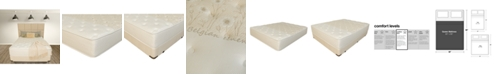 """Paramount Nature's Spa by Serenity 14"""" Cushion Firm Mattress Set- Queen"""