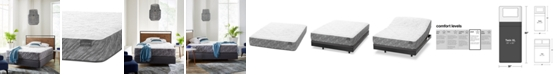 "Aireloom Hybrid 13.5"" Plush Mattress- Twin XL"