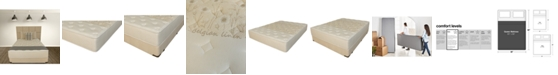 """Paramount Nature's Spa by Oasis 12.5"""" Firm Mattress Set- Queen Split"""