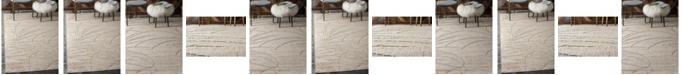 Bridgeport Home Pashio Pas4 Beige Area Rug Collection