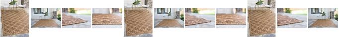 Bridgeport Home Pashio Pas6 Light Brown Area Rug Collection
