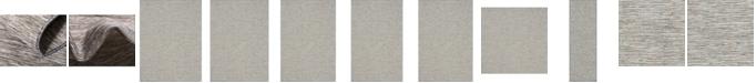 Bridgeport Home Pashio Pas8 Light Gray Area Rug Collection