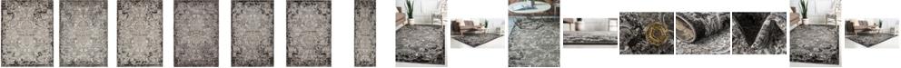 Bridgeport Home Pashio Pas4 Light Gray Area Rug Collection