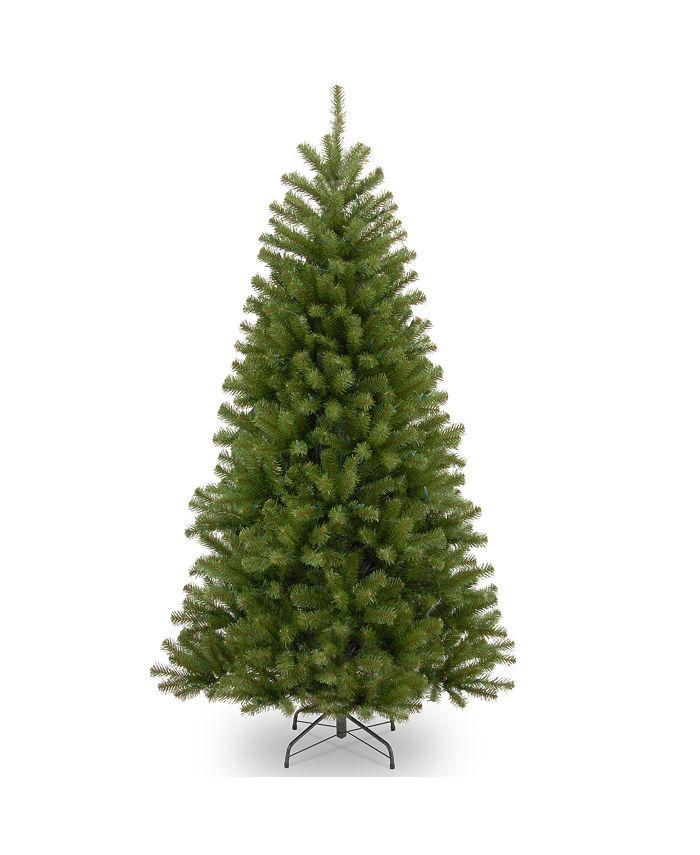National Tree Company - 6' North Valley Spruce Tree