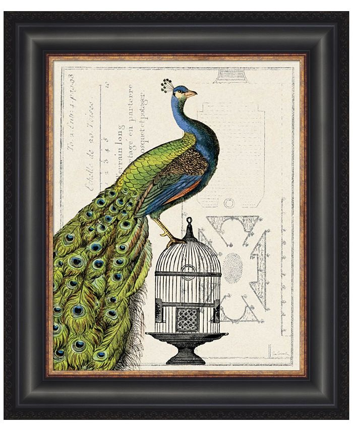 Metaverse Peacock Birdcage I By Sue Schlabach Framed Art Reviews Wall Art Macy S