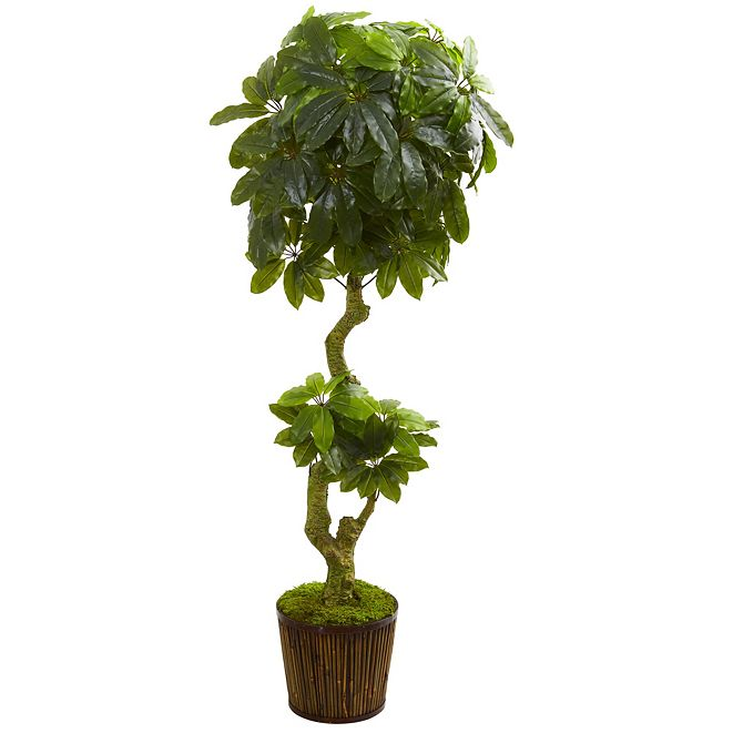 Nearly Natural 6' Schefflera Artificial Tree in Bamboo Stick Basket
