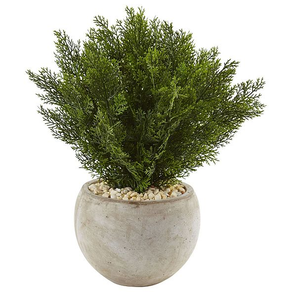 Nearly Natural 2' Cedar Artificial Plant in Sand Colored Bowl