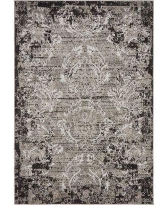 Pashio Pas4 Light Gray 4' x 6' Area Rug
