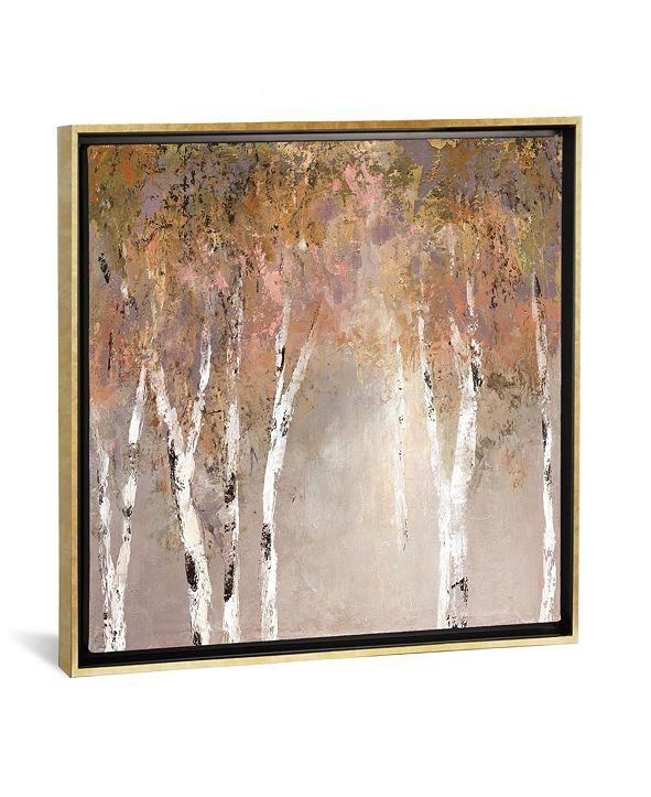 "iCanvas Sunlit Birch Ii by Carol Robinson Gallery-Wrapped Canvas Print - 37"" x 37"" x 0.75"""