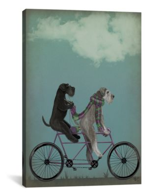 Schnauzer Tandem by Fab Funky Wrapped Canvas Print - 40