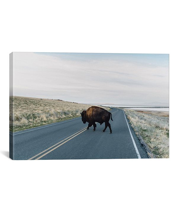"iCanvas Buffalo Bison by Chelsea Victoria Wrapped Canvas Print - 26"" x 40"""