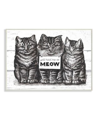 You Had Me at Meow Cats Wall Plaque Art, 10
