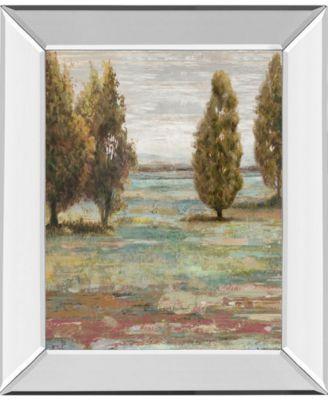 """Prairie Grove II by Paul Duncan Mirror Framed Print Wall Art, 22"""" x 26"""""""
