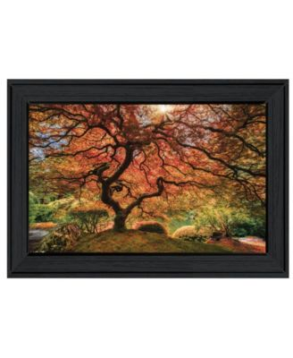 First Colors of Fall I by Moises Levy, Ready to hang Framed Print, Black Window-Style Frame, 21
