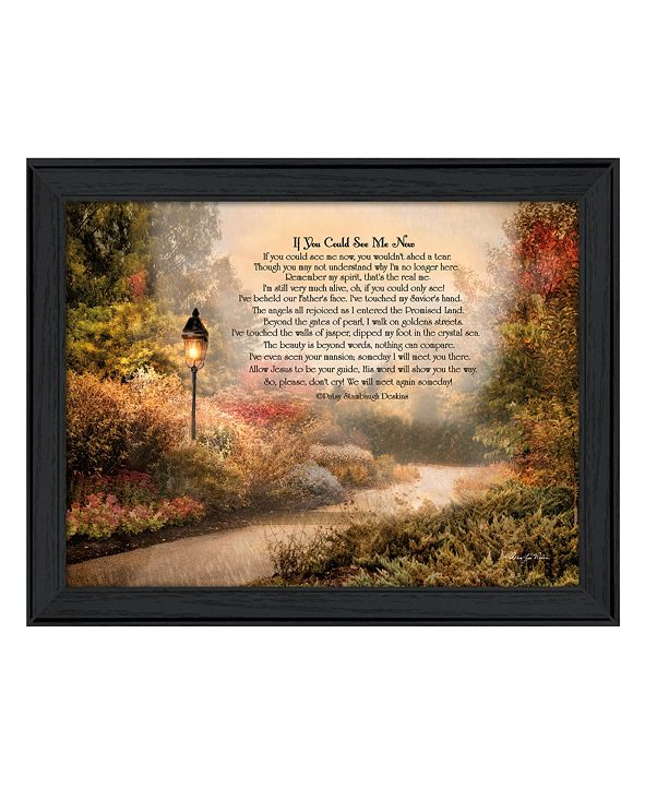 """Trendy Decor 4U If You Could See Me Now By Robin-Lee Vieira, Printed Wall Art, Ready to hang, Black Frame, 19"""" x 15"""""""