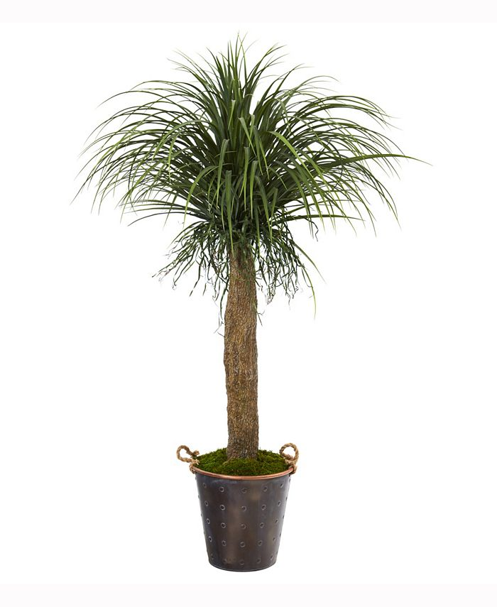 Nearly Natural - 5ft. Pony Tail Palm Artificial Plant in Decorative Metal Pail with Rope