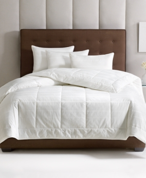 Hotel Collection Primaloft Down Alternative All Season Full/Queen Comforter Bedding