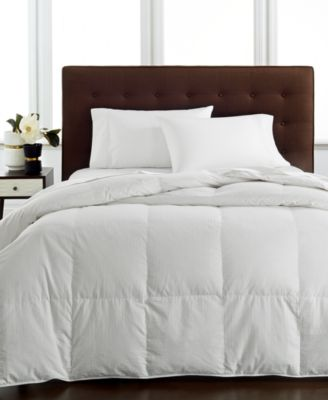 Hotel Collection Lightweight King Siberian Down Comforter