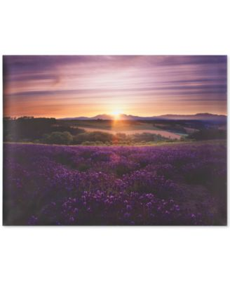 Graham & Brown Lavender Sunset Canvas Print
